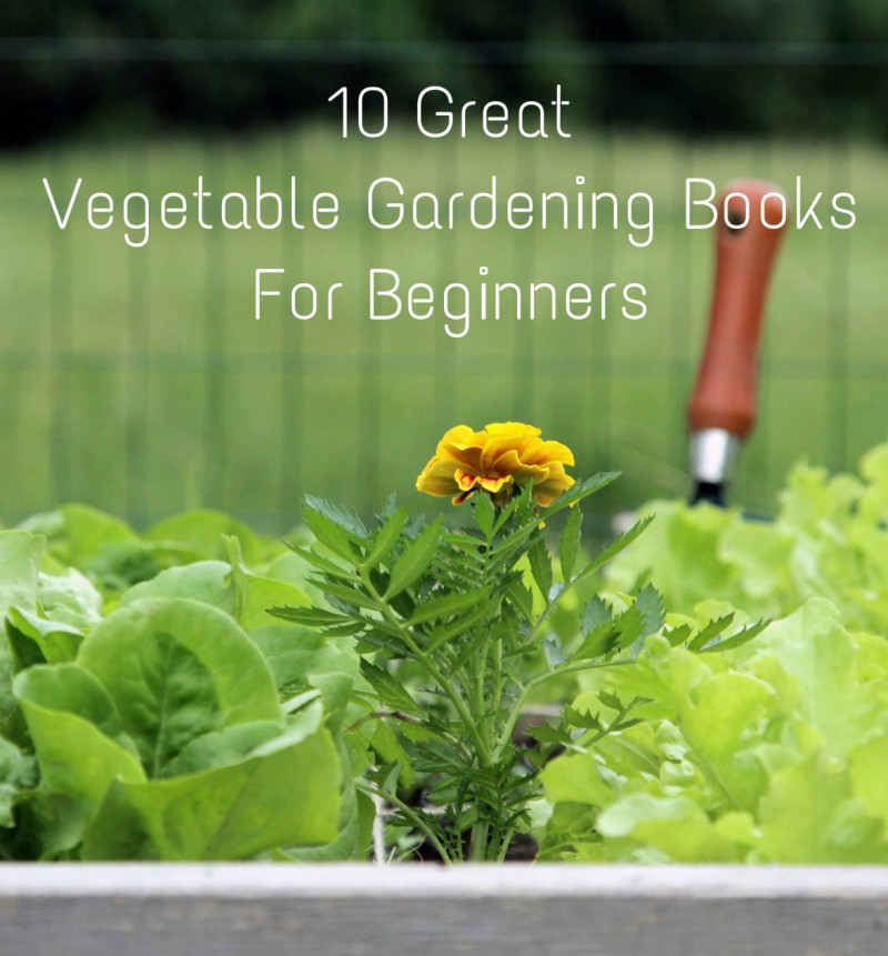 10 Great Vegetable Gardening Books For Beginners